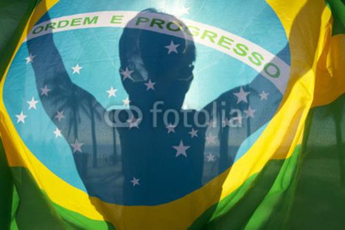 Bild auf Poster   Brazilian Flag Bright Silhouette Palm Trees